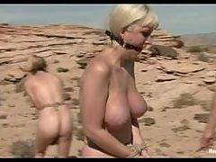 BDSM in Desert